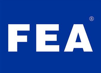 11-X319 FEA