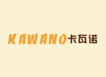 15-V001 卡瓦诺