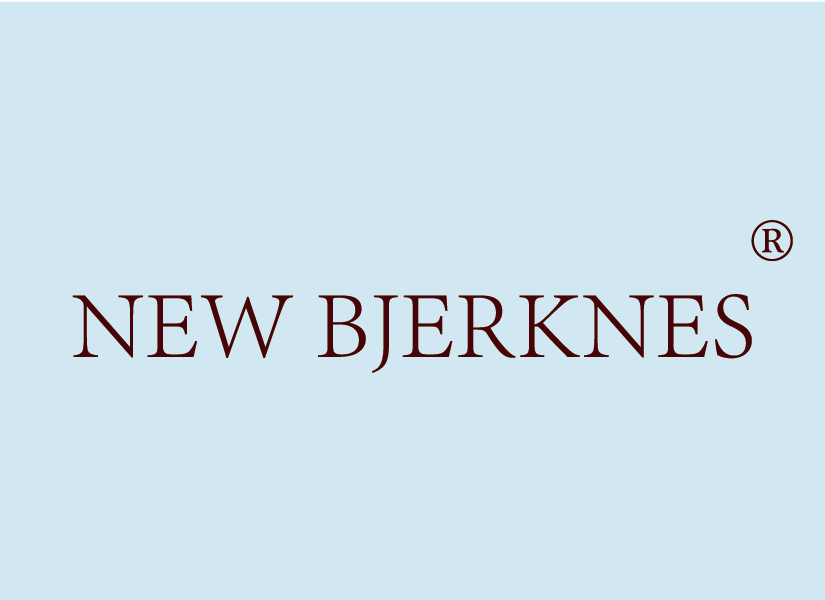 NEW BJERKNES