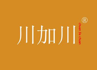 43-V401 川加川