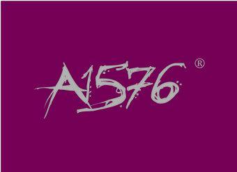 33-V251 A 1576