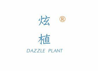 03-V563 炫植 DAZZLE PLANT