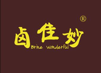 29-V450 卤佳妙 BRINE WONDERFUL