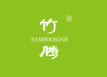 19-V109 竹腾 BAMBOOSOAR