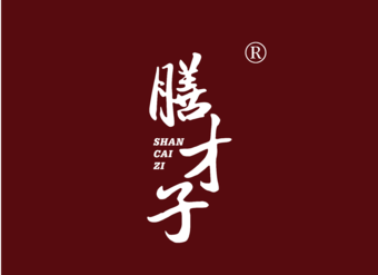 29-V465 膳才子