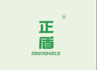 19-V146 正盾 MAINSHIELD