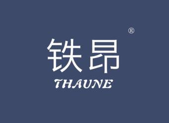 05-V331 铁昂 THAUNE