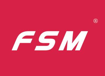 10-V107 FSM