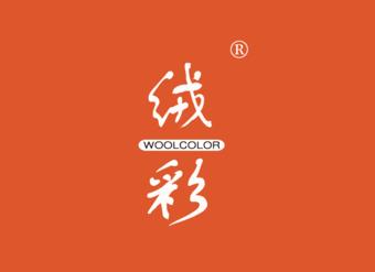 05-V345 絨彩 WOOLCOLOR