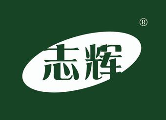 01-V047 志辉