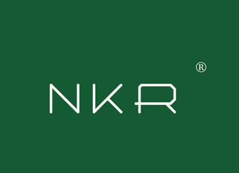 02-V018 NKR