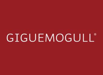 25-V2197 GIGUEMOGULL