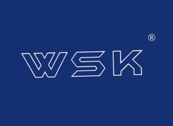 08-V030 WSK