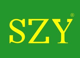 10-V197 SZY