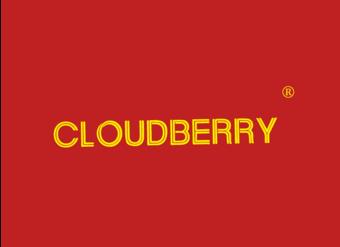 03-V669 CLOUDBERRY