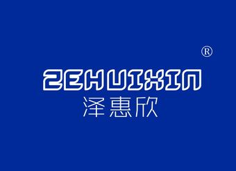 11-X394 泽惠欣