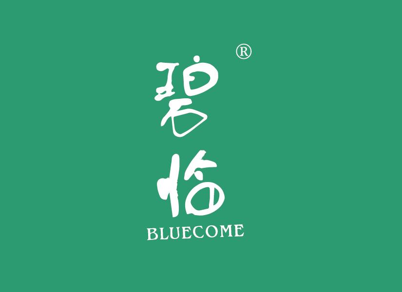 碧临 BLUECOME