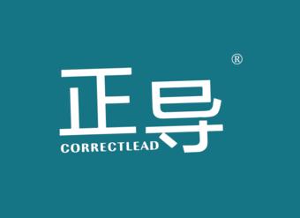 41-V050 正导  CORRECTLEAD