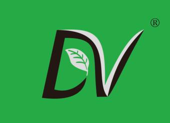 29-V513 DV
