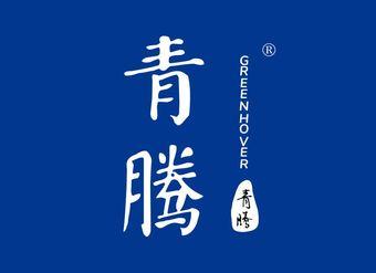 02-V074 青腾 GREENHOVER