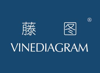 02-V103 藤图 VINEDIAGRAM