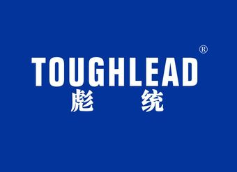 06-V076 彪统 TOUGHLEAD