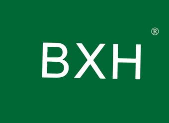 10-V149 BXH