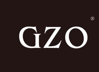 28-V252 GZO