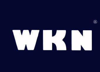 06-V124 WKN