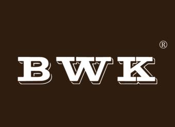 11-V449 BWK