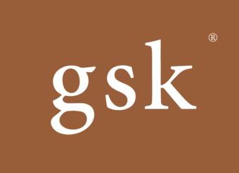 36-V040 GSK