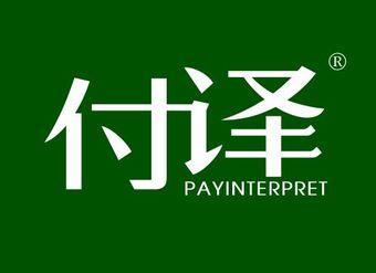 09-V667 付译 PAYINTERPRET
