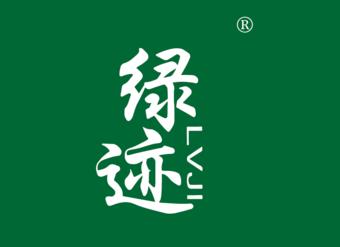 31-V205 绿迹