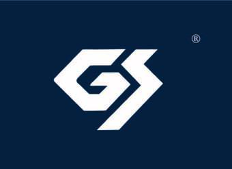 19-V179 GS