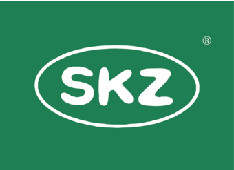28-V262 SKZ