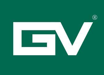 10-V198 GV