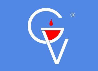 28-V281 GV