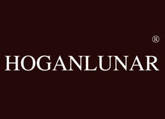 18-V498 HOGANLUNAR