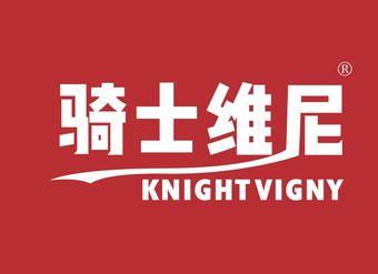 21-V268 骑士维尼 KNIGHTVIGNY