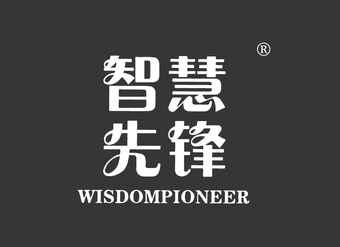 16-V111 智慧先锋 WISDOMPIONEER
