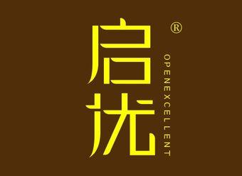 39-V010 启优 OPENEXCELLENT