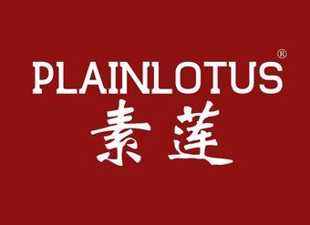 20-V413 素莲 PLAINLOTUS