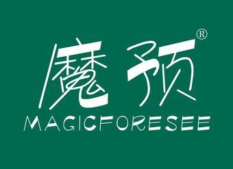 30-V661 魔预 MAGICFORESEE