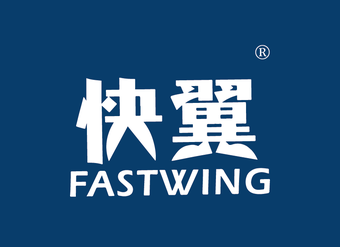 45-V011 快翼 FASTWING