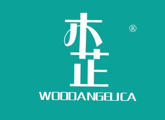 14-V439 木芷 WOODANGELICA