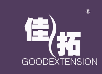 22-V003 佳拓  GOODEXTENSION