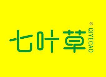 37-V022 七叶草