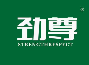 41-V152 劲尊 STRENGTHRESPECT