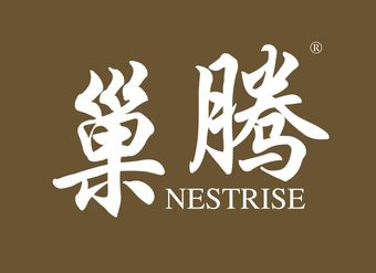 21-V425 巢騰 NESTRISE