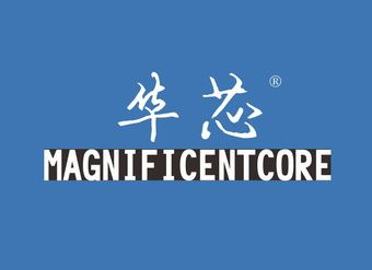 04-V101 华芯 MAGNIFICENTCORE
